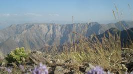Сочинение на тему горы узбекистана 6 класс